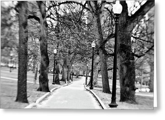 Commons Park Pathway Greeting Card by Scott Pellegrin