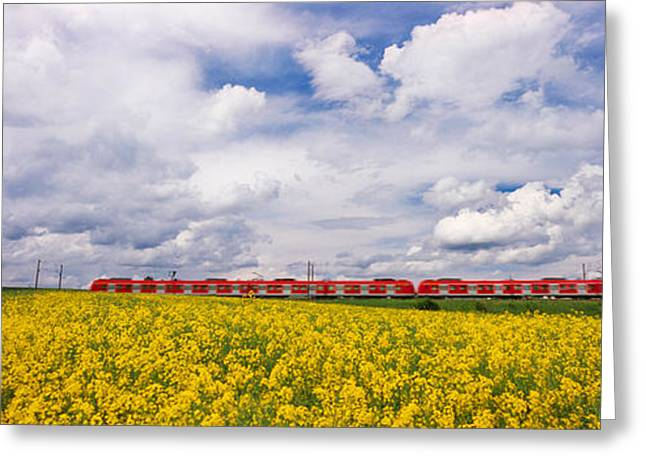 Train Photography Greeting Cards - Commuter Train Passing Through Oilseed Greeting Card by Panoramic Images