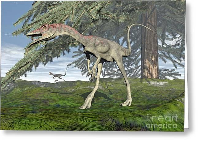 Fir Trees Greeting Cards - Compsognathus Dinosaur Under Fir Tree Greeting Card by Elena Duvernay