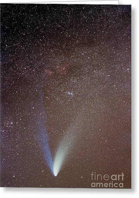 Hale-bopp Comet Greeting Cards - Comète Greeting Card by Laurent Laveder