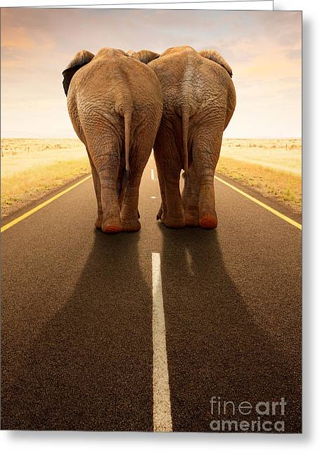 Animal Themes Greeting Cards - Conceptual - Going away together / travel by road Greeting Card by Johan Swanepoel