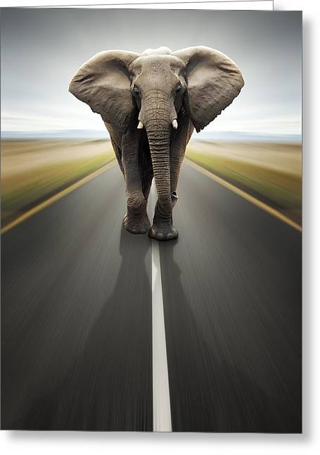Blurred Greeting Cards - Heavy duty transport / travel by road Greeting Card by Johan Swanepoel