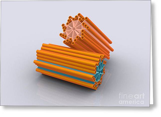 Tubulin Greeting Cards - Conceptual Image Of Centrioles Greeting Card by Stocktrek Images