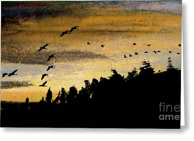 Hunting Bird Pastels Greeting Cards - Conclusion of the Day Greeting Card by R Kyllo