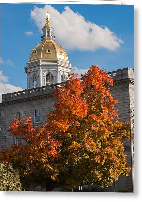 Concord Greeting Cards - Concord State House Greeting Card by Nestor Colon