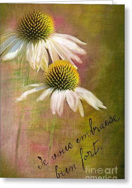 Cone Flower Couple Greeting Card by Norma Warden