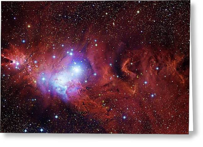 Cone Nebula And Christmas Tree Cluster Greeting Card by Robert Gendler