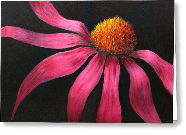 Sofa Size Greeting Cards - Coneflower Greeting Card by Marie-louise McHugh