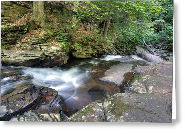 Conestoga Greeting Cards - Conestoga Falls From The Top Greeting Card by Gene Walls