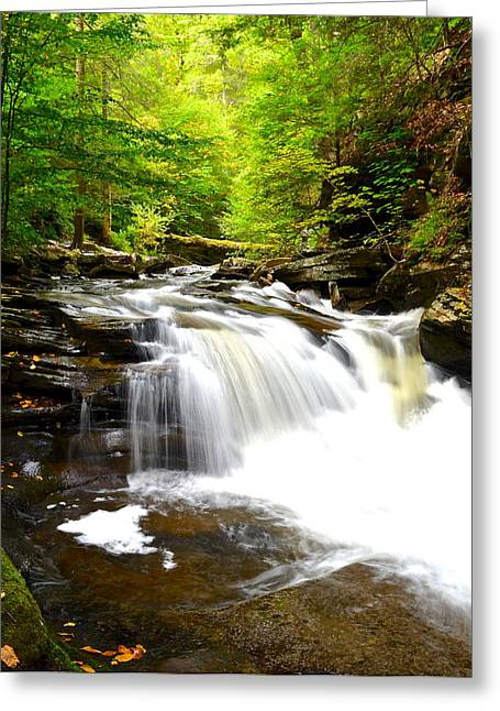 Marvelous View Greeting Cards - Conestoga Falls Greeting Card by Frozen in Time Fine Art Photography
