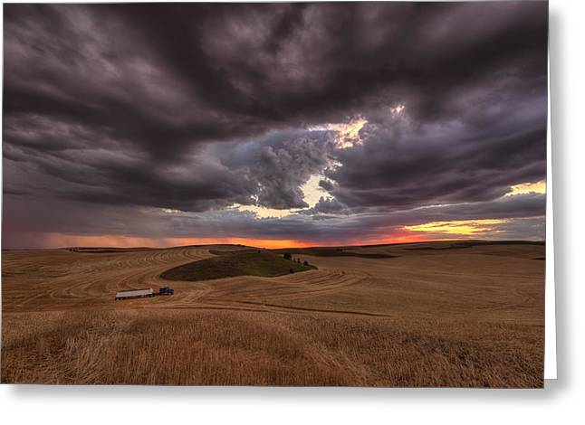 Confliction Greeting Card by Mark Kiver