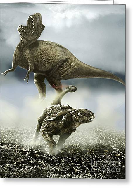 Ankylosaurus Digital Art Greeting Cards - Confrontation Between A Club-tailed Greeting Card by Jan Sovak
