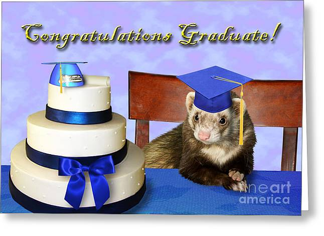 Wildlife Celebration Greeting Cards - Congratulations Graduate Ferret Greeting Card by Jeanette K