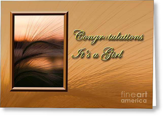 Wildlife Celebration Greeting Cards - Congratulations its a Girl Grass Sunset Greeting Card by Jeanette K