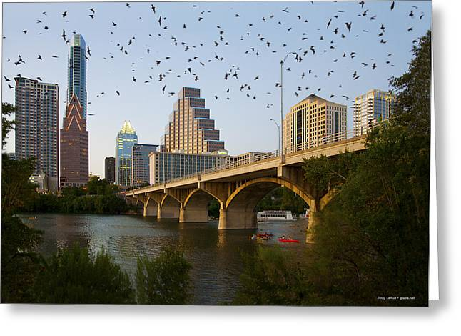 Austin. Bats Greeting Cards - Congress Avenue Bridge with Bats Greeting Card by Doug LaRue