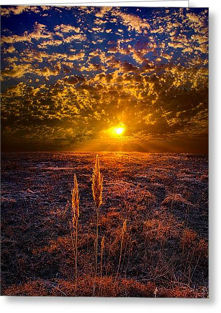 Geographic Greeting Cards - Connected Greeting Card by Phil Koch