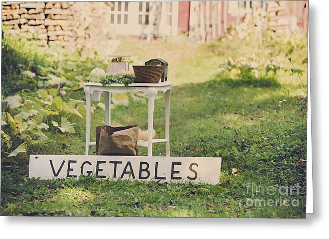 Garden Vegetables Greeting Cards - Connecticut Vegetable Stand Greeting Card by Diane Diederich