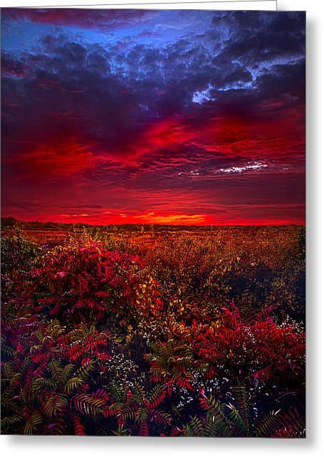 Hike Greeting Cards - Connecting Greeting Card by Phil Koch
