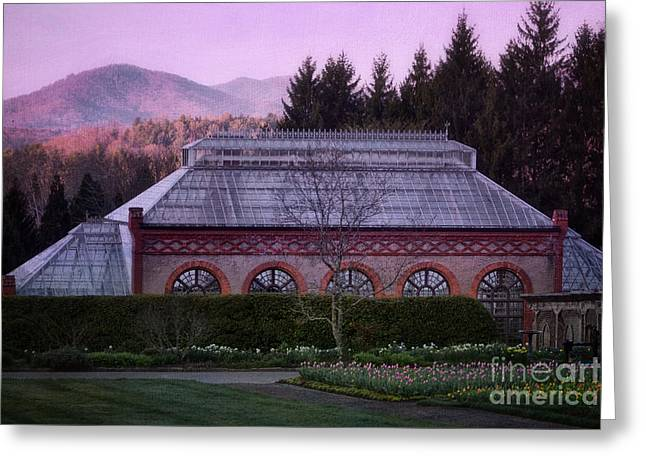 Conservatory At Biltmore Estate Greeting Card by Doug Sturgess