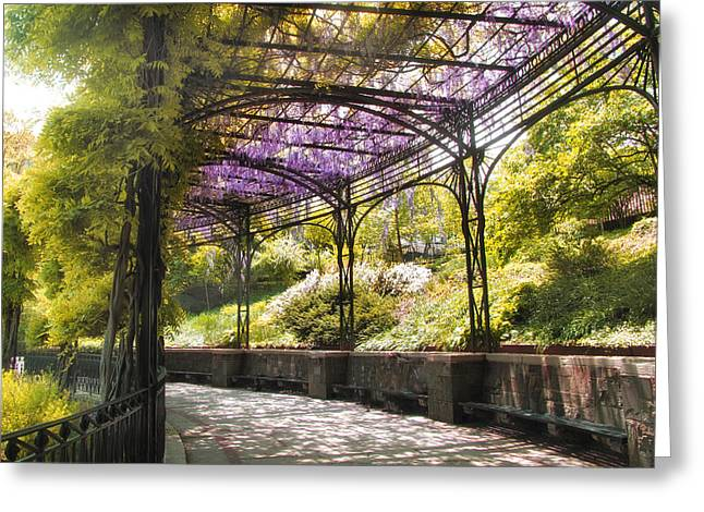 Wisteria Greeting Cards - Conservatory Garden Wisteria Greeting Card by Jessica Jenney