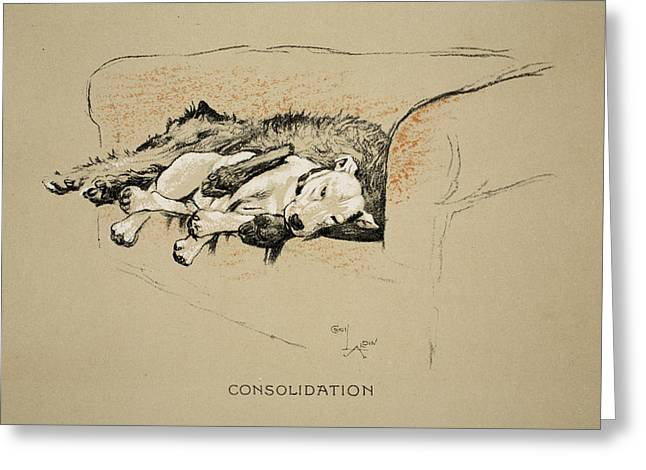 Terrier Dog Drawings Greeting Cards - Consolation, 1930, 1st Edition Greeting Card by Cecil Charles Windsor Aldin