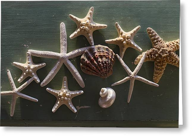 Star Fish Greeting Cards - Constellation Greeting Card by Laura  Fasulo