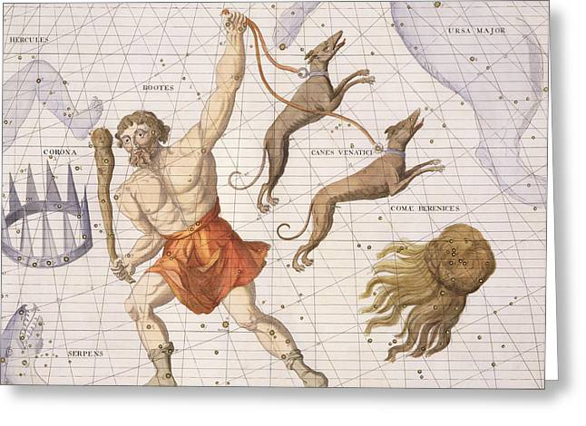 Astronomy Drawings Greeting Cards - Constellation of Bootes Greeting Card by Sir James Thornhill