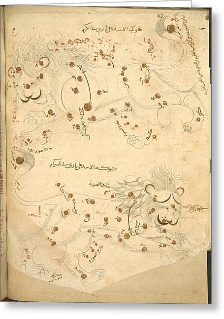 Constellation Of Leo Greeting Card by British Library