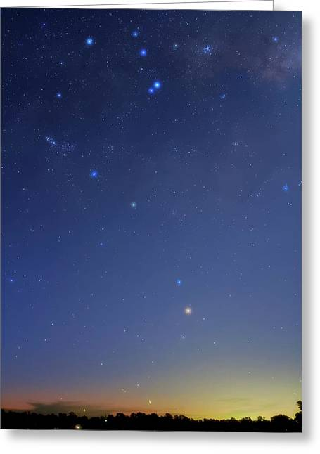 Constellation Of Scorpius Greeting Card by Luis Argerich