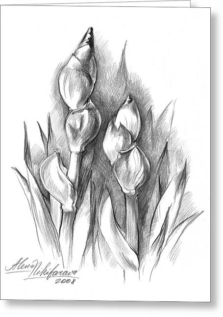 Conte Pencil Drawings Greeting Cards - Conte Pencil Sketch of Two irises Greeting Card by Alena Nikifarava