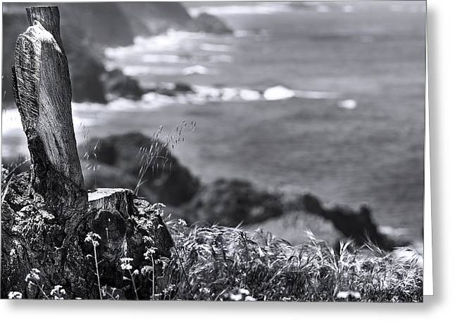 Big Sur Ca Greeting Cards - ContemplateBy Denise Dube Greeting Card by Denise Dube