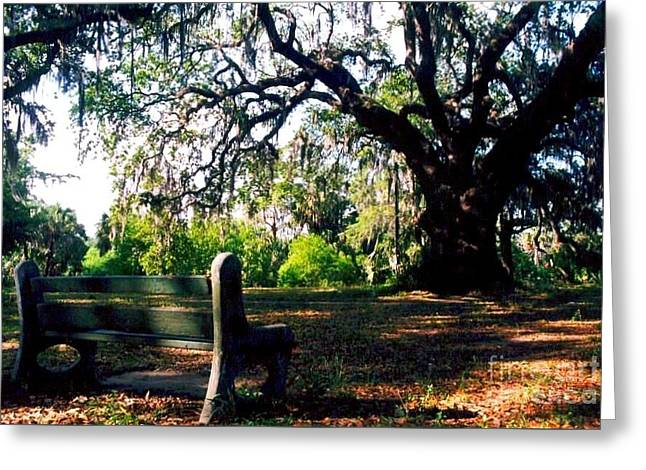 New Orleans Louisiana Framed Prints Greeting Cards - Contemplating Solitude Greeting Card by Michael Hoard