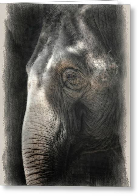 Face Shadow Greeting Cards - Contemplation Greeting Card by Joan Carroll