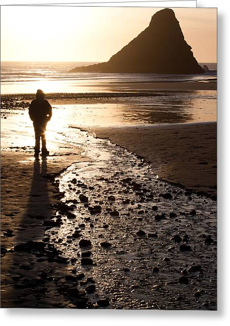 John Daly Greeting Cards - Contemplation Greeting Card by John Daly