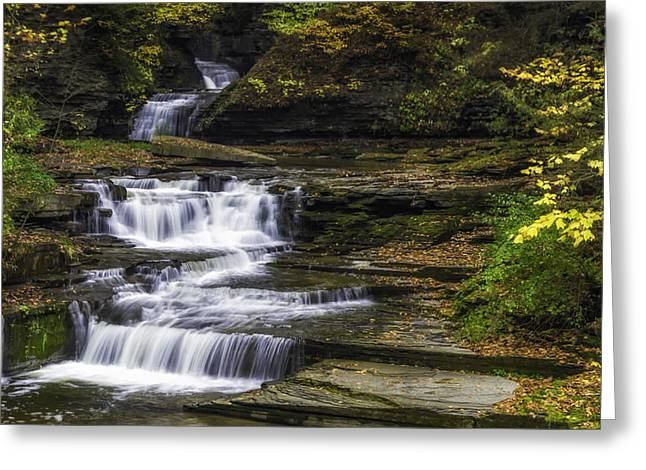 Ithaca Greeting Cards - Contemplation Greeting Card by Karen Celella
