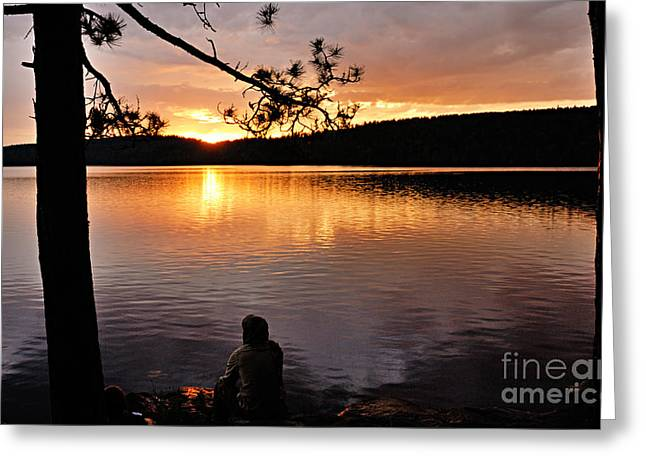 Contemplation Greeting Card by Larry Ricker
