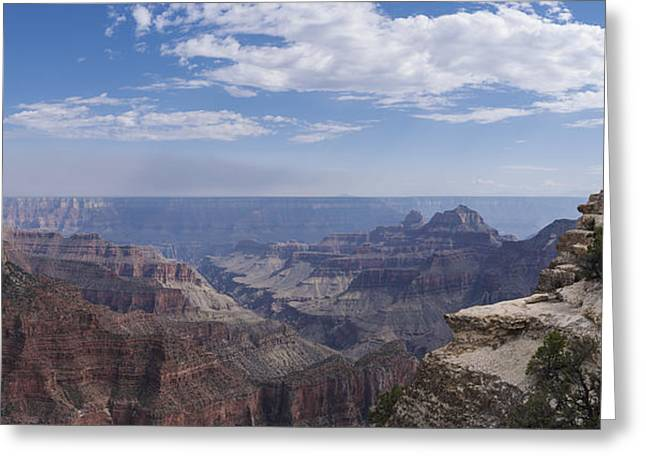 Contemplation Greeting Card by Mike Herdering