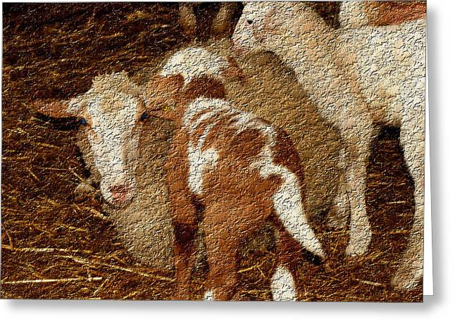 Owner Art Mixed Media Greeting Cards - Contemporary Sheep II Greeting Card by Michael Braham