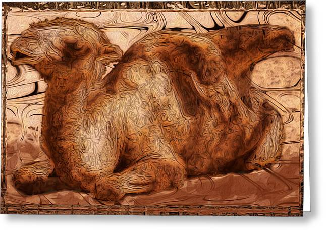 Camel Digital Greeting Cards - Content Greeting Card by Jack Zulli