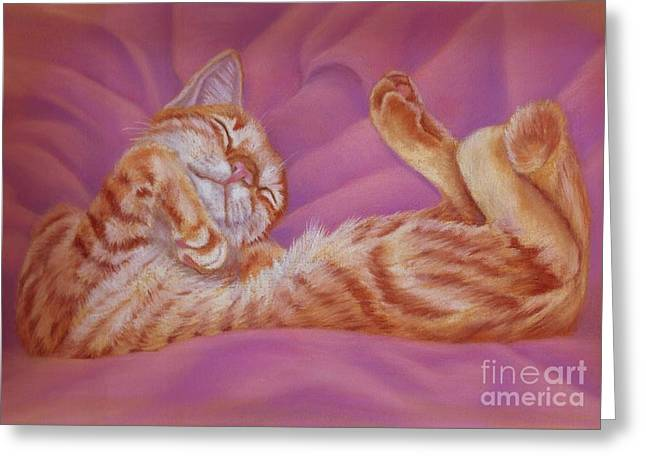 Cute Kitten Pastels Greeting Cards - Contentment Greeting Card by Pencil Paws