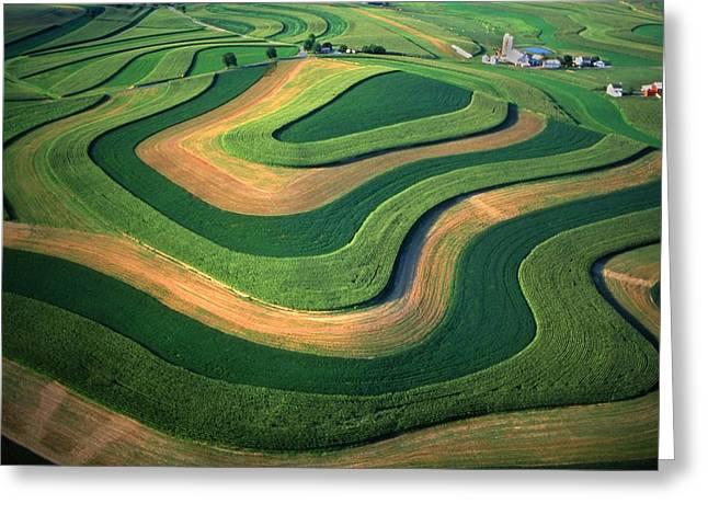 Contour Farm Art Aerial  Greeting Card by Blair Seitz
