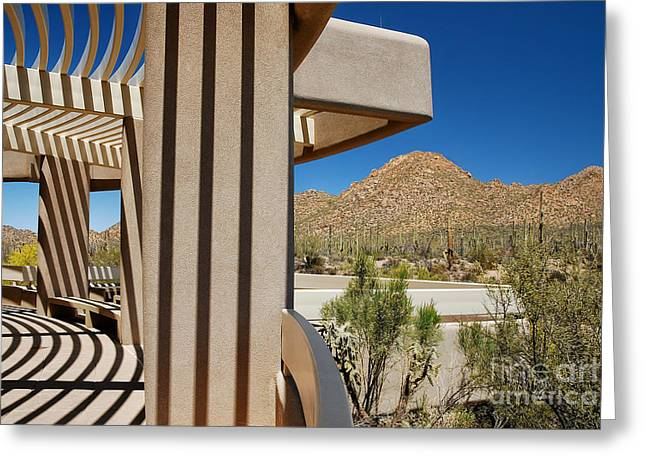 Visitor Center Greeting Cards - Contrasts Greeting Card by Lois Bryan