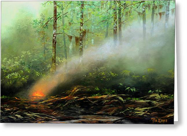 Wetland Greeting Cards - Controlled Burn Greeting Card by Tim Davis