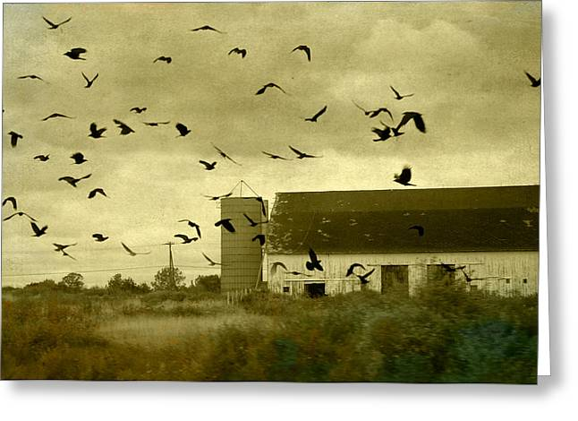 Crow Image Greeting Cards - Converged Greeting Card by Gothicolors Donna Snyder