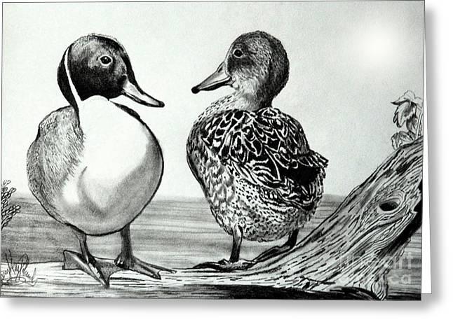 Mallard Drawings Greeting Cards - Conversation Between Ducks Greeting Card by Cheryl Poland