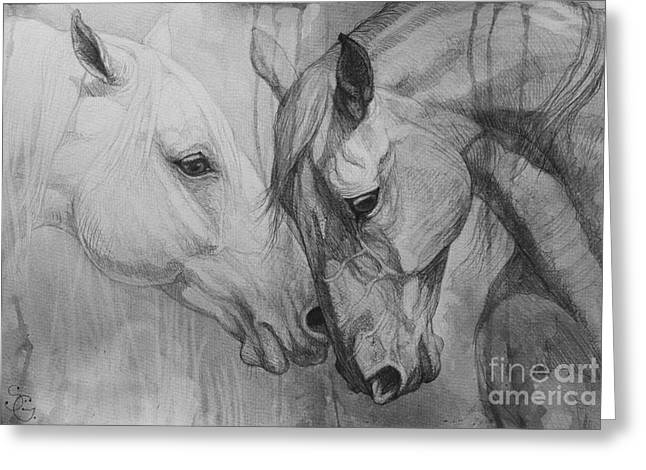 Horse Drawings Greeting Cards - Conversation I Greeting Card by Silvana Gabudean
