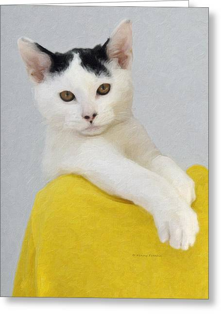 Cool Cat Greeting Card by Kenny Francis