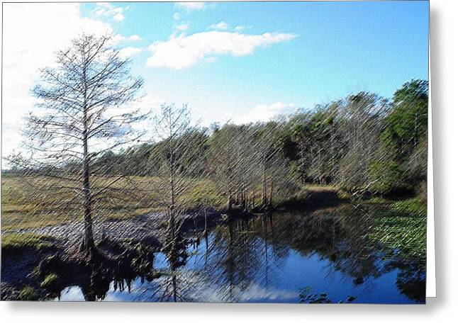 Reflections Of Sky In Water Greeting Cards - Cool Country Lake 2 Greeting Card by Cheryl  Waugh Whitney