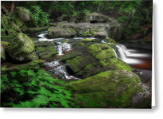 Cool Mountain Stream Greeting Card by Bill Wakeley