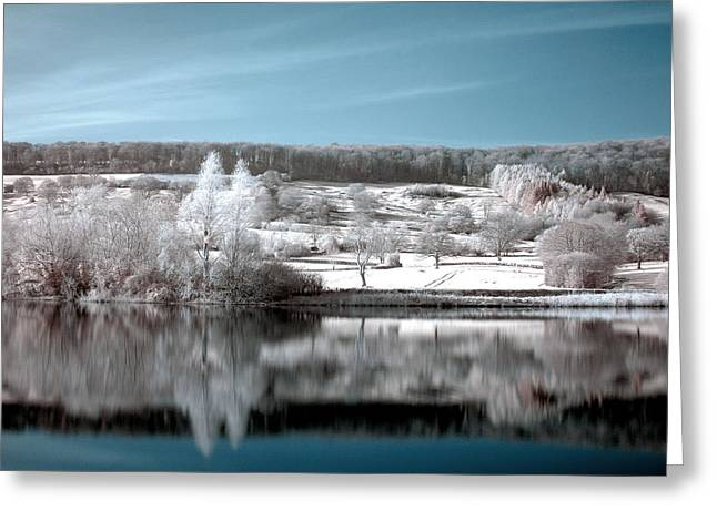 Daily Mail Greeting Cards - Cool Reflections Greeting Card by Catherine Perkinton